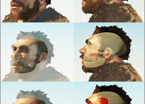 """Facial forensic reconstruction by artist artista Cícero Moraes mbSci"""