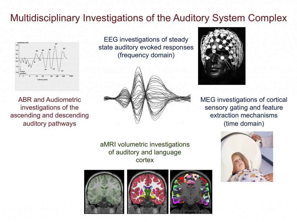 """Autism Investigations of the Auditory System Nicole Gage mbSci"""